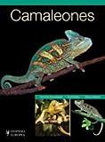 Camaleones (Reptiles)