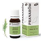Pranarôm - Aceite Esencial de Árbol del Té Bio - Hoja - 10 ml