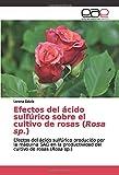 Efectos del ácido sulfúrico sobre el cultivo de rosas (Rosa sp.): Efectos del ácido sulfúrico producido por la máquina SAG en la productividad del cultivo de rosas (Rosa sp.)