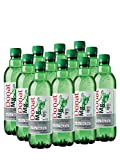 Donat mg Agua Mineral Natural Rica en Magnesio - 500 mg de Magnesio en 500mg – Agua con Gas 100% Natural - 12 x 0,5L