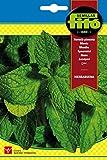 Semillas Fitó 6234 - Hierbabuena