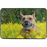 dilidy Happy Dog in Lush Meadow Felpudo Sala de Estar Dormitorio Cocina Baño Decorativo Espuma Ligera Impreso Alfombra