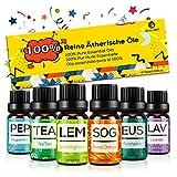 Set de Aceites Esenciales para Difusor,100% Natural Puro Aromaterapia Aceite Aromático,6 x 10 ml Essential Oils Set para Humidificadores, Lámparas de Fragancia,Jabón,SPA,Masaje